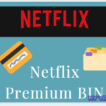 Netflix premium BIN